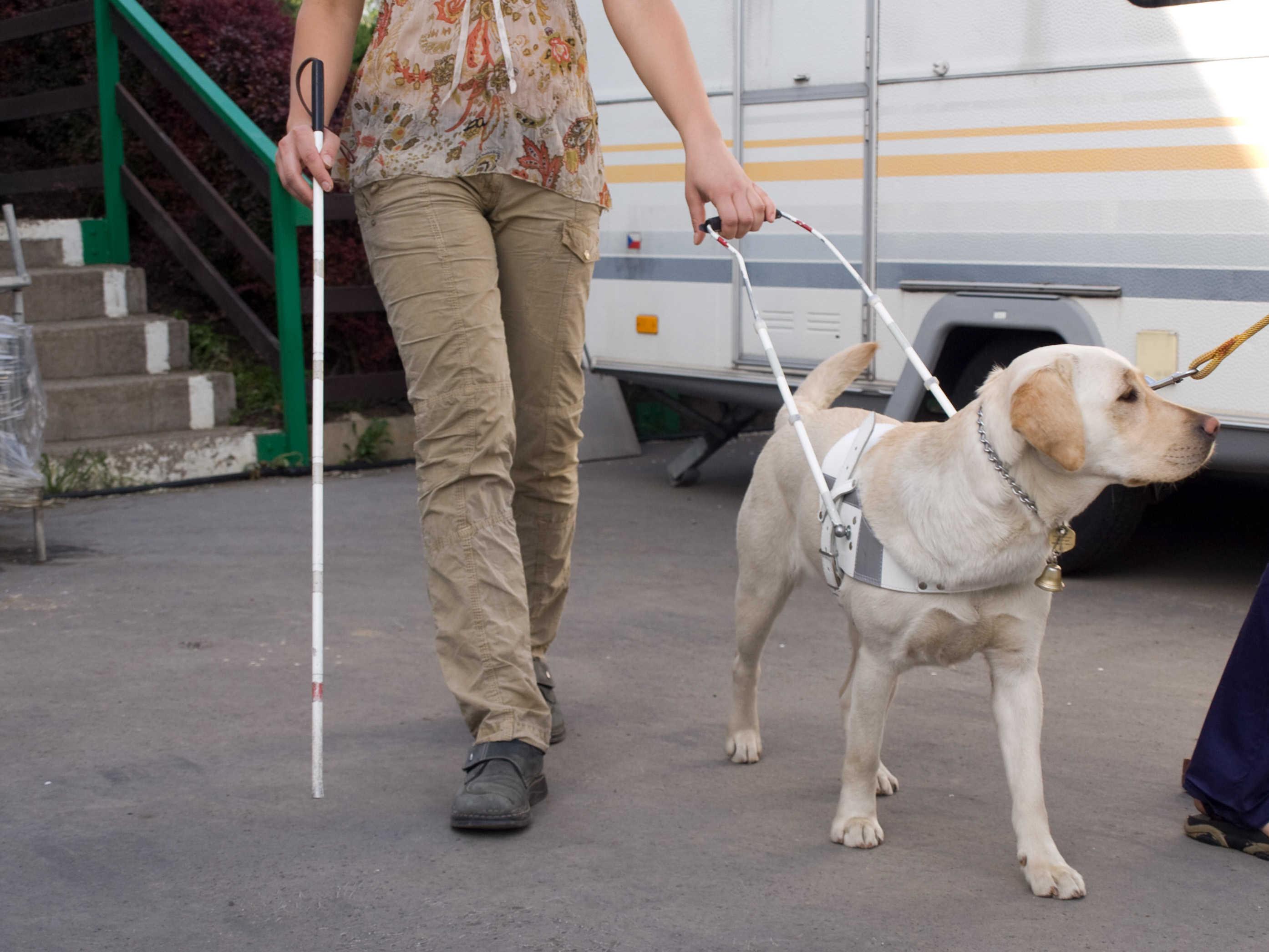 Fonkelnieuw Ik zou zonder blindengeleidehond kunnen, maar ik wil het niet KS-98